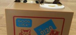 Hucha gato en caja
